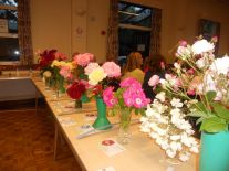roseshow17d