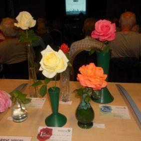 roseshow17f